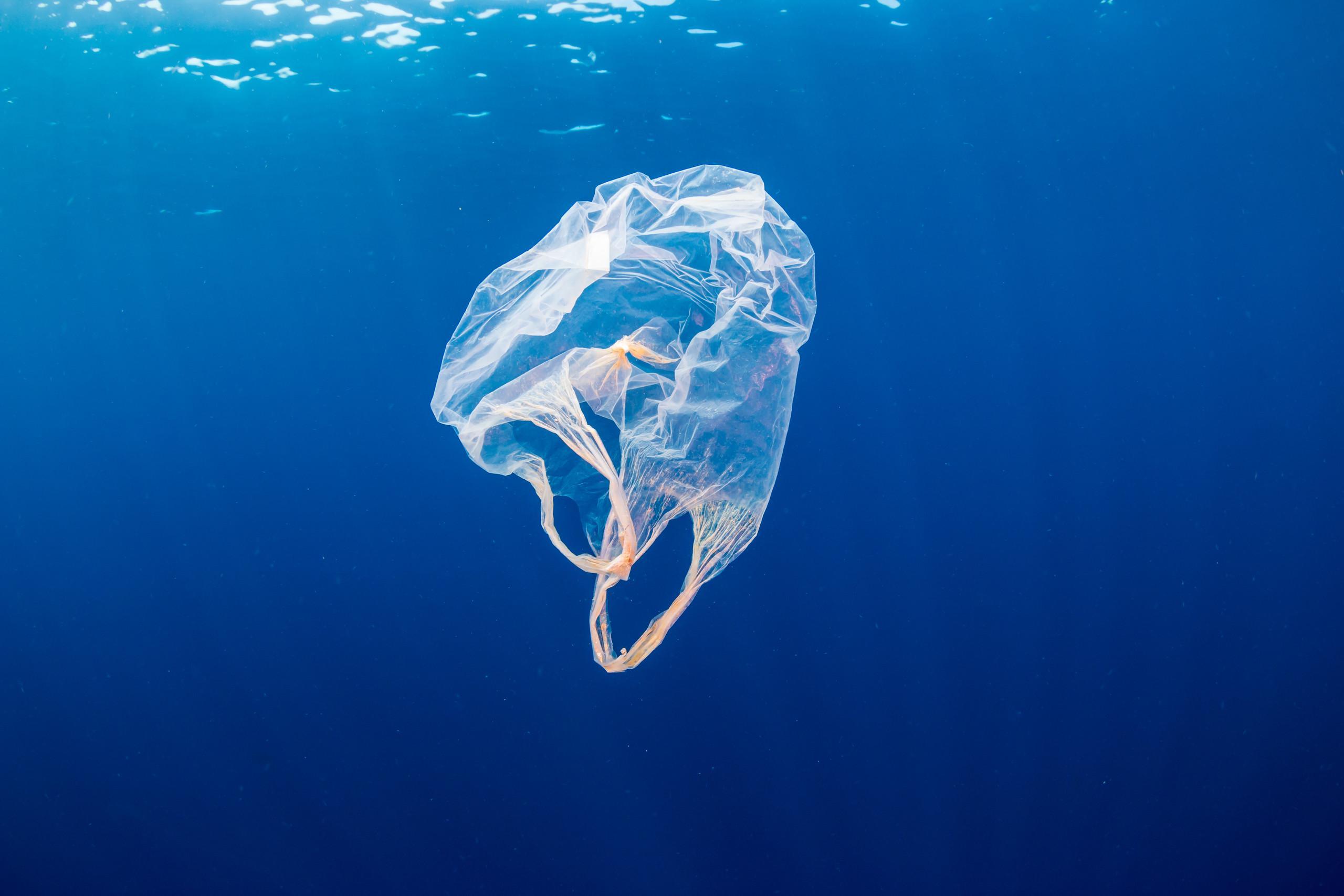 """科学家发现可回收塑料的""""终极奥秘"""" 原材料竟随处可见?"""